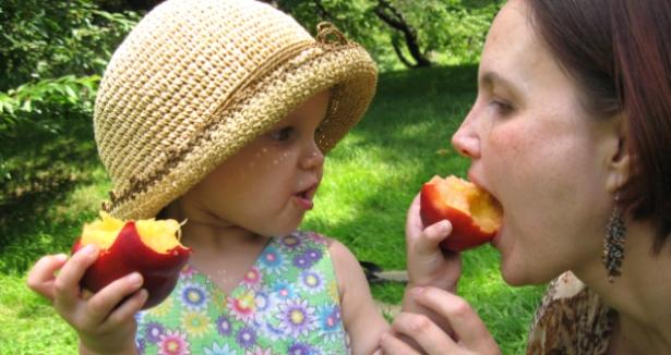 Οι τροφικές αλλεργίες σχετίζονται άμεσα με την ανοσορρύθμιση