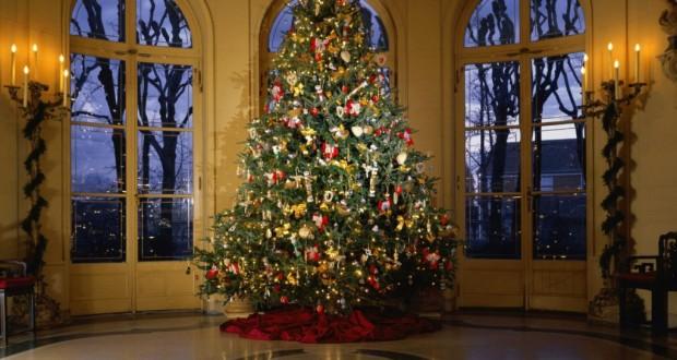 Μπορεί να είστε αλλεργικοί στο χριστουγεννιάτικο δέντρο σας;