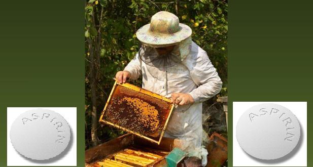 Ασπιρίνη και αλλεργία στη μέλισσα
