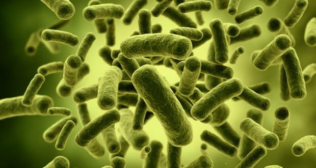 Ο ρόλος του μικροβιώματος στην πρόληψη των αλλεργιών