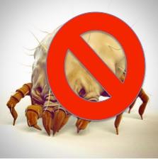 Αλλεργία στα ακάρεα της οικιακής σκόνης: νεότερα δεδομένα