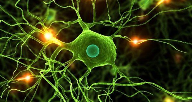 Οι εποχικές αλλεργίες προκαλούν αλλαγές στον εγκέφαλο!