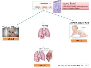 Σχηματική παράσταση της εξέλιξης των ατοπικών νοσημάτων από την διαταραχή του δερματικού φραγμού και την αύξηση της ευαισθητοποίησης έως την ανάπτυξη ατοπικών νοσημάτων